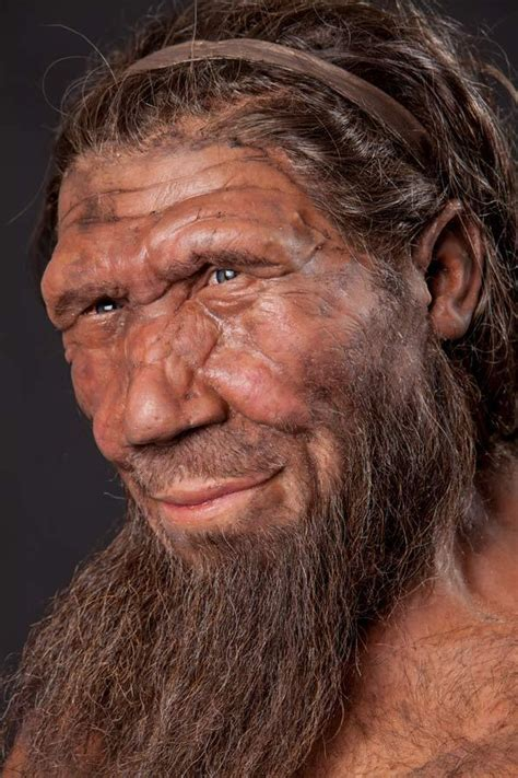 One Million Years Of The Human Story At Natural History